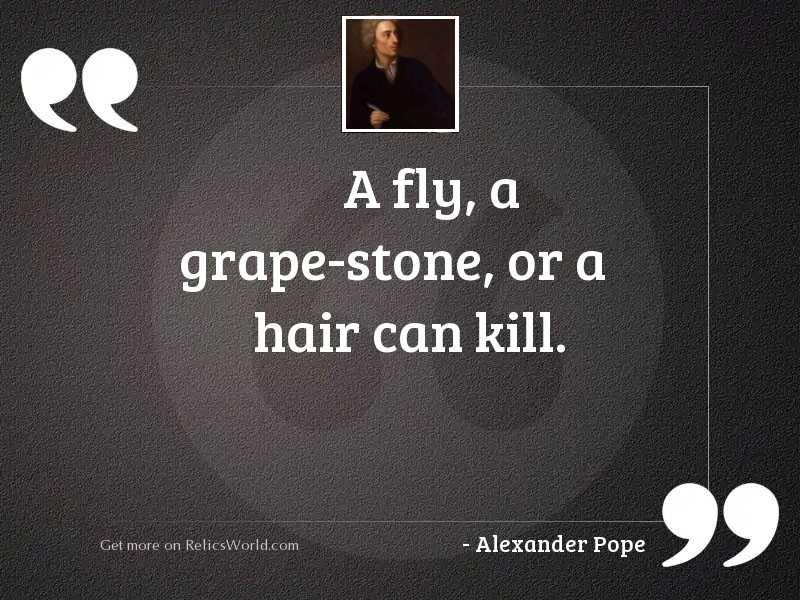 A fly, a grape stone,