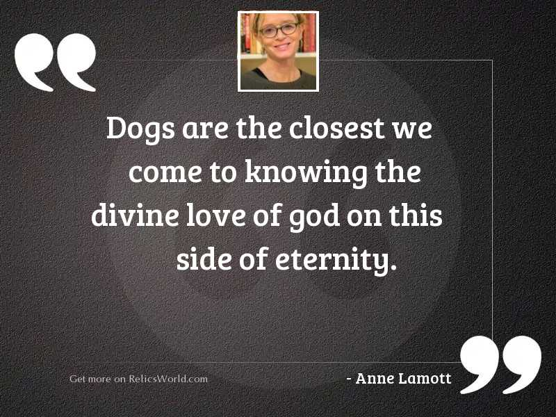 Dogs are the closest we