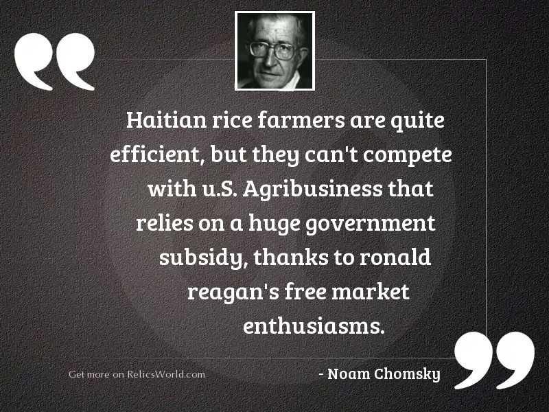 Haitian rice farmers are quite