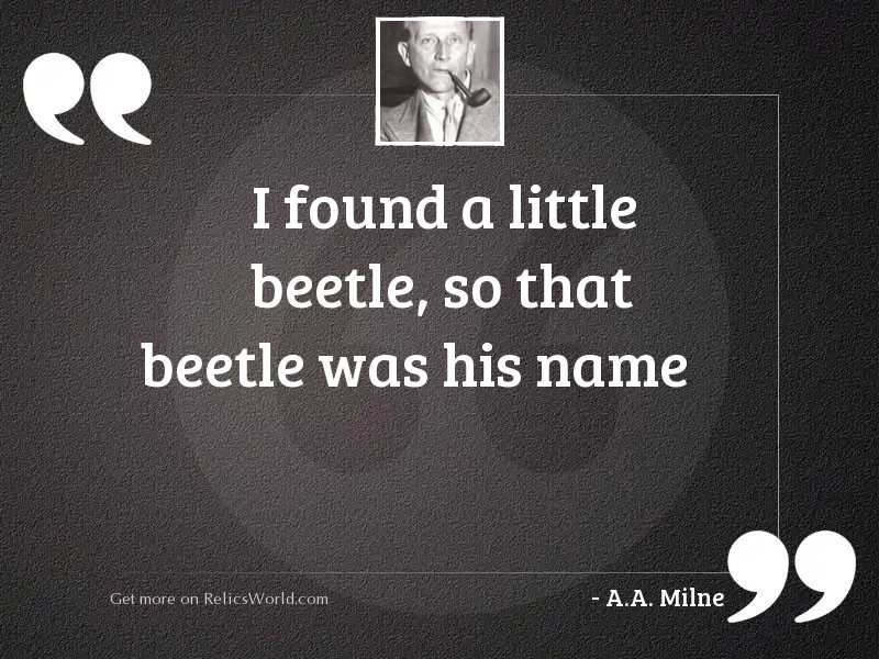 I found a little beetle,