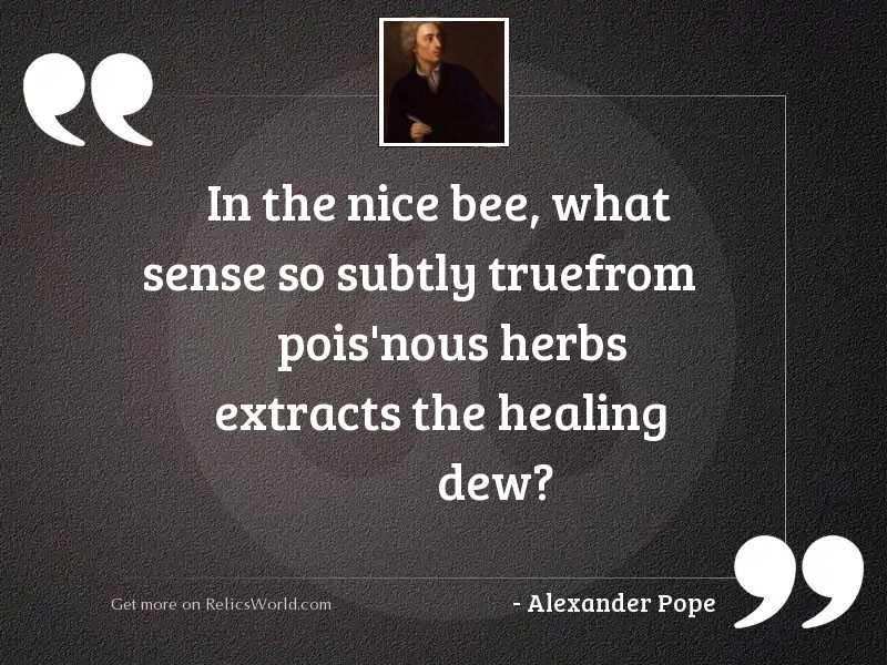 In the nice bee, what