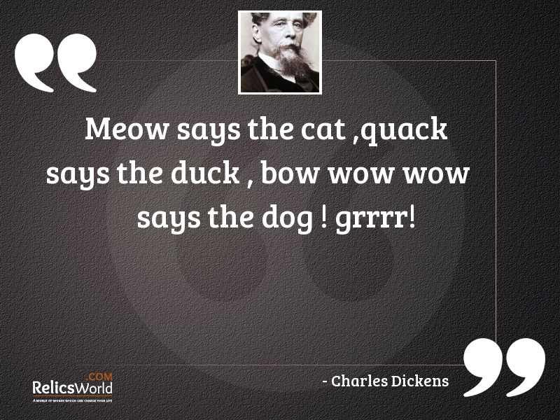 Meow says the cat quack