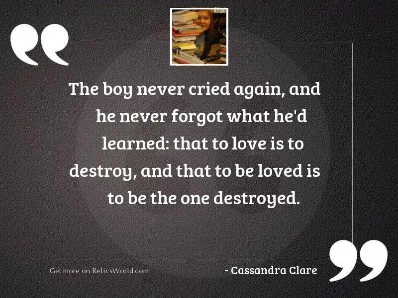 The boy never cried again,