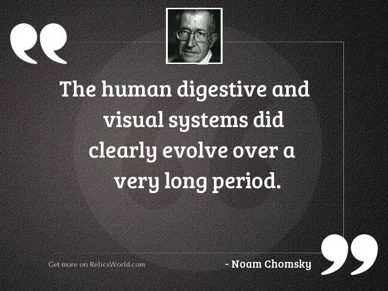 The human digestive and visual