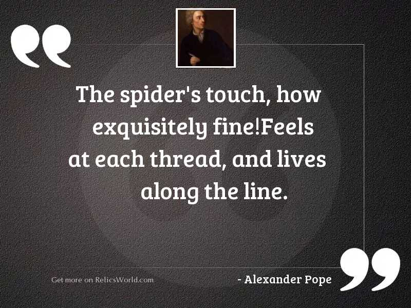 The spider's touch, how