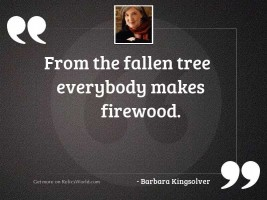 From the fallen tree everybody