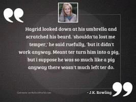 Hagrid looked down at his