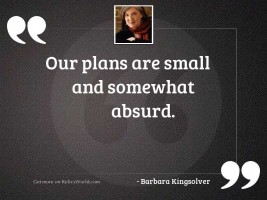 Our plans are small and