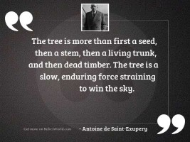 The tree is more than