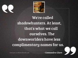 Were called Shadowhunters At least
