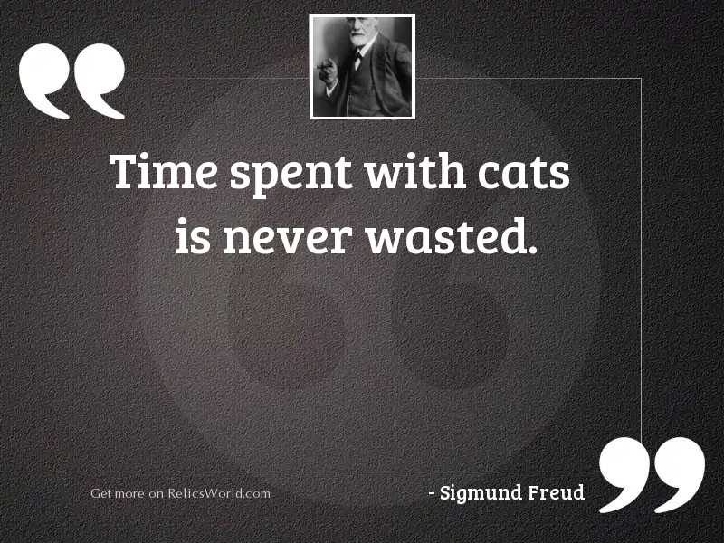 Time spent with cats is