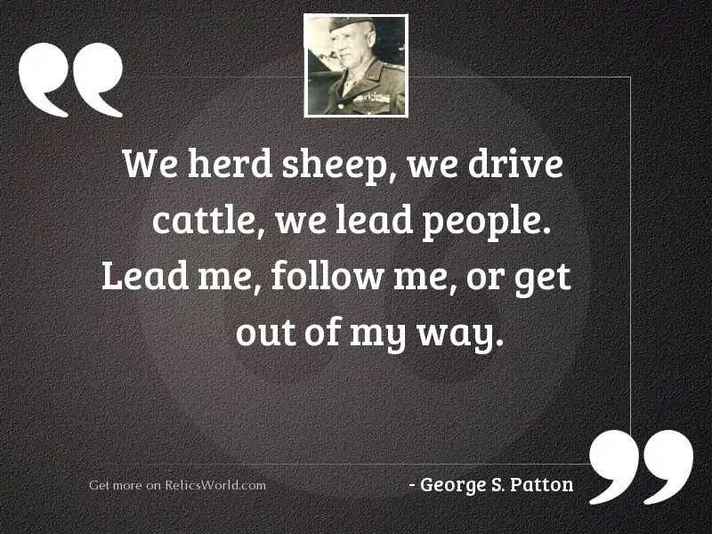 We herd sheep, we drive